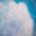 120_2015-04-23_19-51-54_andreykus'kalo_новый размер